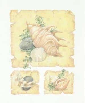 Parchment Shells IV